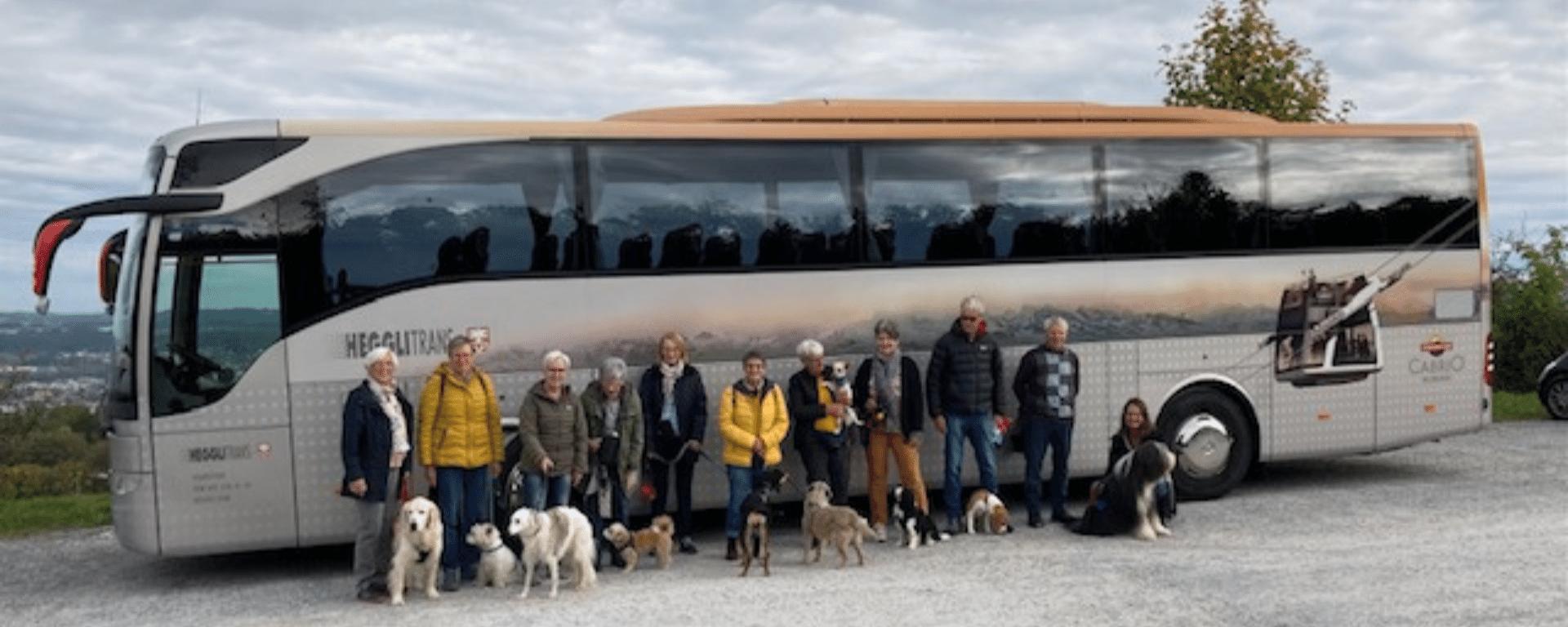 Hundereise Zürich Herbst 2021